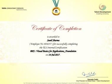VBA Scripting Certificate