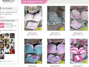 Web Design (Shop bikini)