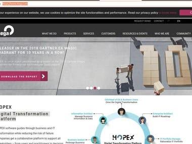 Digital transform website
