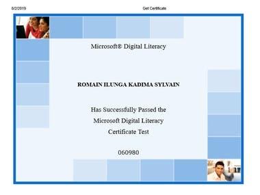 Test of Microsoft Digital Lite