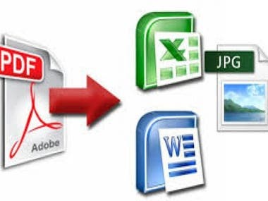 convert PDF to word, File conversion and Typing work