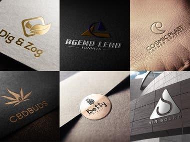 I will do a Professional and Unique Logo Design for you