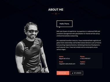Custom website (wordpress)