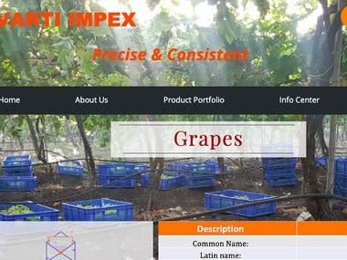Multi-Lingual Website for a Transportation Company