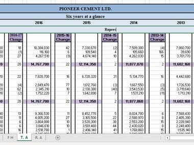 Financial and Critical Analysis of MNC & Pivot Table