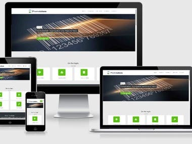 High Quality Web Application & Responsive Web Design