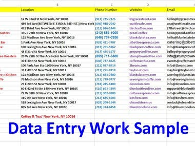 My Previews Data Entry Work Sample