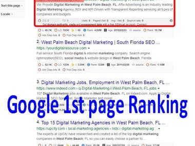 Google 1st page ranking SEO optimization