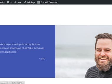 WordPress website create