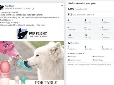 Social Media Marketing on PUP FLIGHT (Dogs Products)