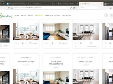 Website cration