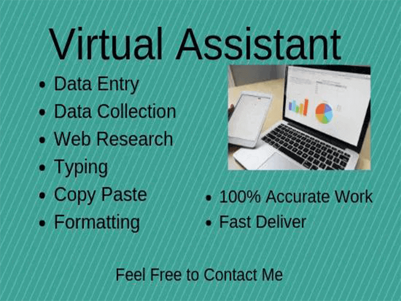 Data Entry and Virtual Assistant with Web Research