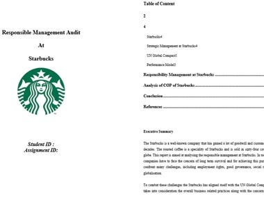 Audit Management Report