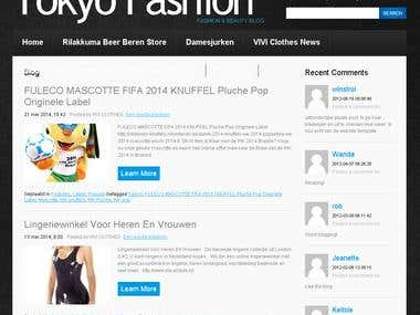 Tokyo Fashion Wordpress Solution