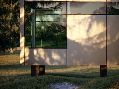 Conceptual housing DESIGN