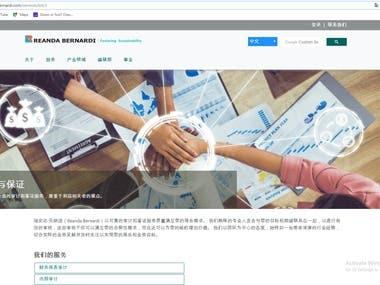 Multi-language website