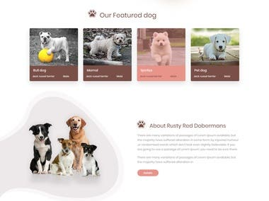 Pets Shop Website