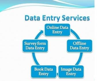 Data entry portfolio