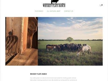 Web Design & Copywriting