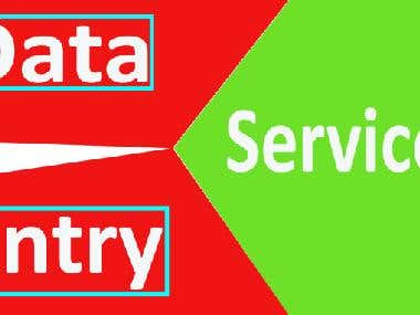 I will provide quality data entry services