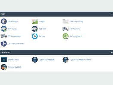 Websites Hosting Services