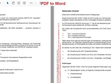 Conversion from PDF to Word with individual requirement