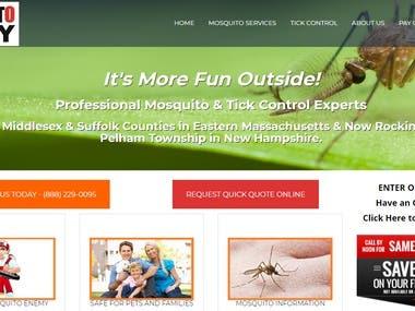 Web Designing & Logo Design