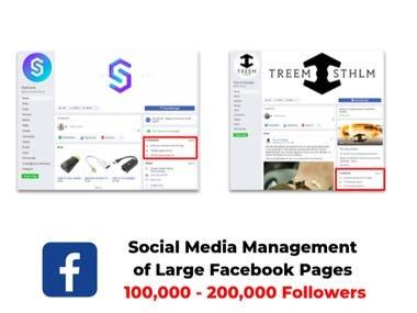 Social Media Management for Large Facebook Store