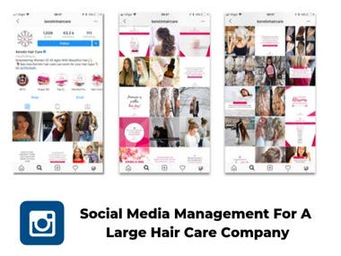 Social Media Marketing for Large Hair Care Company