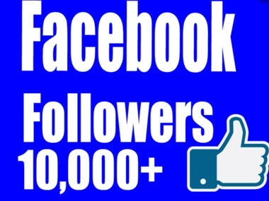 I will provide you active followers , likes on your Facebook