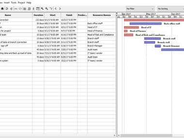 Project gantt chart and project plans