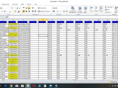 I Can do various kind of data entry
