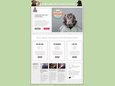 Labrador Web Design