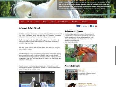 Adel Stud website