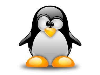 Remote Linux Admins