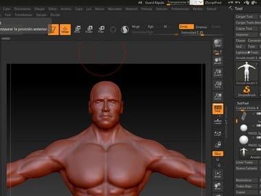 3D Model Arnold schwarzenegger - Zbrush