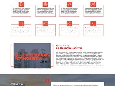 Website Design Layout