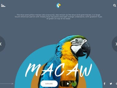 Macaw Facts - Website Design
