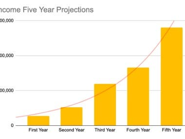 Net Income Five Year Projections
