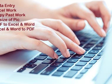 Data Entry, Data Mining, MS Excell, MS Word, MS PowerPoint