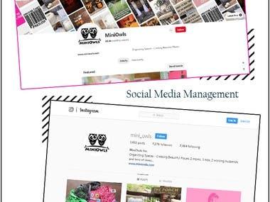 Social Media Marketing and Management - MiniOwls