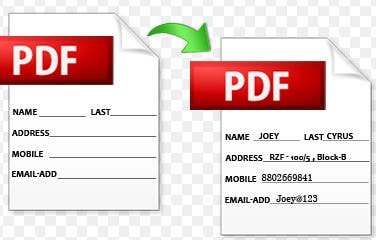 PFD Editing-PDF Fillable Form-Word to PDF-Typing