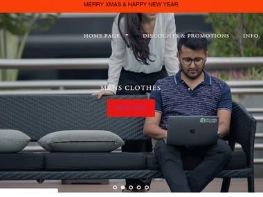 Shopify Custom Work
