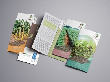 Graphic Design + Mockups - Flyers, Brochures for the UNPD