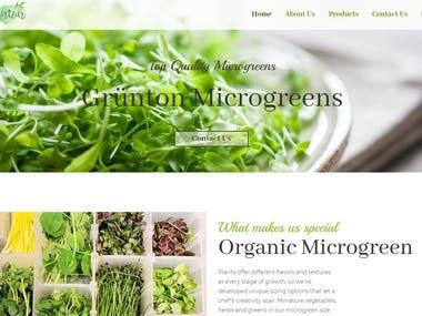 Grünton Microgreens