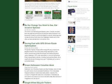 Wordpress Site(Complete SEO)