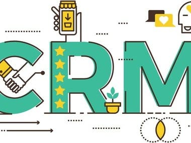 CRM setting up and analysis of business processes