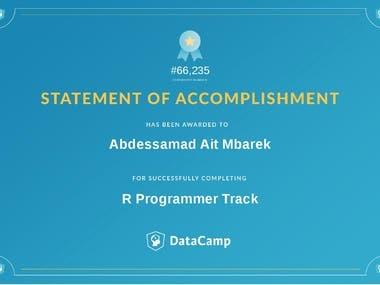 R Programmer Certificate