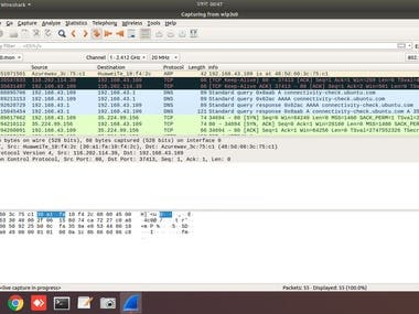 Network protocol analyzing with WireShark
