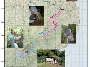 Proyectos Mapas